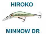 Team Cormoran Hiroko Minnow DR