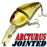 Coyote Arcturus Jointed 7cm