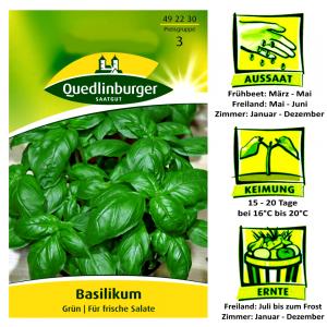 Quedlinburger Basilikum Grün Ocimum basilicum / für Salate & Soßen / Ernte ab Juli