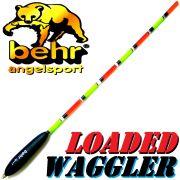 Behr Loaded Waggler Pose 2+2g vorgebleit ca. 25cm mit Multicolorantenne für gute Bisserkennung
