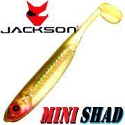 Jackson Mini Shad Gummifisch 2,8 ca. 7cm Farbe Baitfish 1 Stück Forellen & Barschköder