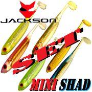 Jackson Mini Shad Gummifisch Set 2,0 ca. 5cm 6 Farben a 2 Stück = 12 Stück im Set Forellen & Barschköder
