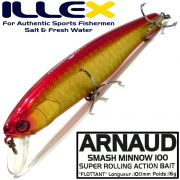 Illex Arnaud 100F Wobbler Floating 100mm 16g Farbe HL Wakin Design by Seiji Kato