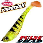 Berkley Power Bait Pulse Shad Gummifisch 14cm Perch 25 Stück im Set!