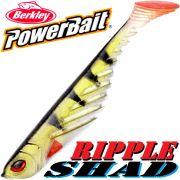 Berkley Power Bait Ripple Shad 5 Gummifisch 13cm Perch 3 Stück im Set NEU!