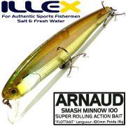 Illex Arnaud 100F Wobbler Floating 100mm 16g Farbe HL Wakasagi Design by Seiji Kato