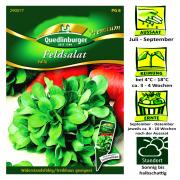 Quedlinburger Feldsalat Sorte Vally - Valerianella locusta / wiederstandsfähig & Treibhaus geeignet / Ernte September bis Dezember
