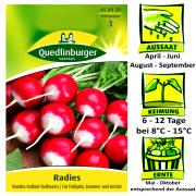 Quedlinburger Radieschen Radies Rundes Halbrot-Halbweiss - Raphanus sativus / sehr frühe im Frühjahr / Ernte Mai bis Oktober