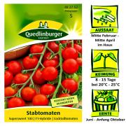 Quedlinburger Stabtomate Sorte Supersweet 100 F1-Hybride / Cocktailtomate / Ernte Juli bis Anfang Oktober